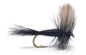 Black Gnat Mygg & Landinnsekter