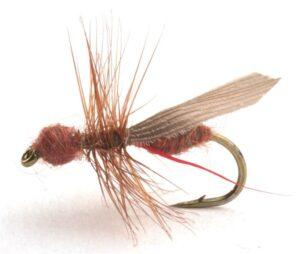 Flying Ant Cinnamon Mygg & Landinnsekter
