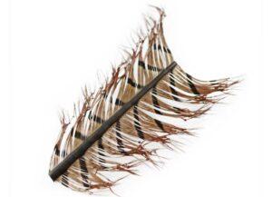 Pheasant Tail Knotted Legs Fjær