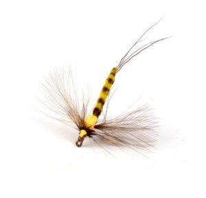 Vulgata Spent Spinner Krok 10 Døgnfluer